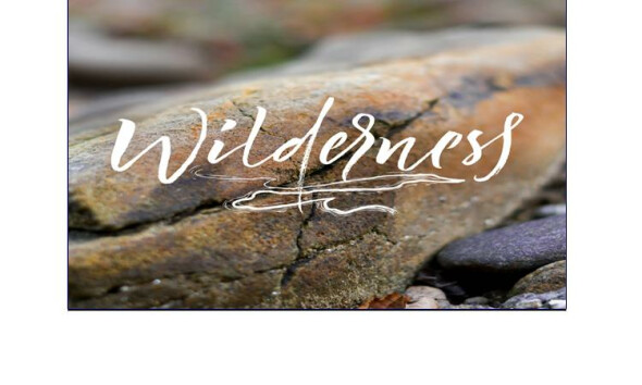 "Wilder · ness -""state of the wild"""
